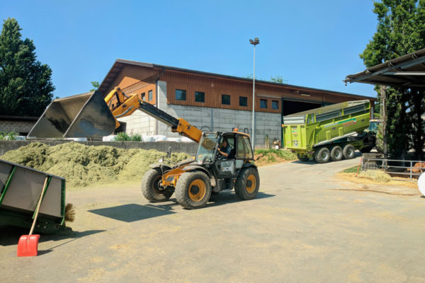 azienda-agricola-faggion-badia-polesine-rovigo36