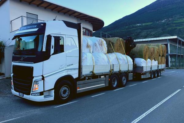 foraggi commercio e trasporto faggion veneto italia (1)