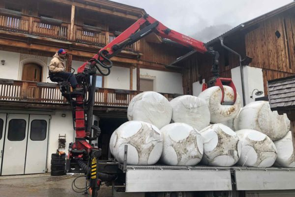 foraggi commercio e trasporto faggion veneto italia (3)